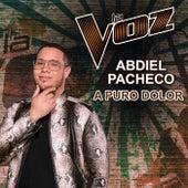 A Puro Dolor (La Voz US) de Abdiel Pacheco