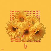 Say What You Want in Bed von Bryce