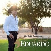 Me Está Gustando by Eduardo Cabral