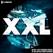 Can't Remember Remixes von Botnek