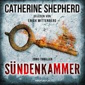 Sündenkammer - Zons-Thriller 9 (Ungekürzt) von Catherine Shepherd