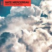 Righteous Energy von Nate Mercereau