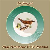 Nightingale de Hugo Montenegro