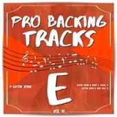 Pro Backing Tracks E, Vol.10 by Pop Music Workshop