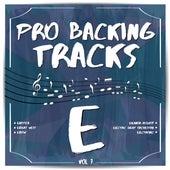 Pro Backing Tracks E, Vol.7 by Pop Music Workshop