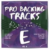 Pro Backing Tracks E, Vol.21 by Pop Music Workshop