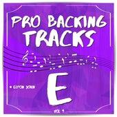 Pro Backing Tracks E, Vol.9 by Pop Music Workshop