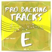 Pro Backing Tracks E, Vol.14 by Pop Music Workshop