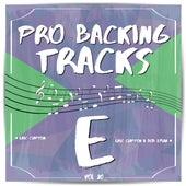 Pro Backing Tracks E, Vol.20 by Pop Music Workshop