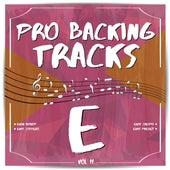 Pro Backing Tracks E, Vol.11 by Pop Music Workshop