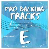 Pro Backing Tracks E, Vol.13 by Pop Music Workshop