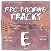 Pro Backing Tracks E, Vol.8 by Pop Music Workshop