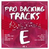 Pro Backing Tracks E, Vol.2 by Pop Music Workshop