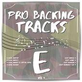 Pro Backing Tracks E, Vol.4 by Pop Music Workshop