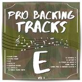 Pro Backing Tracks E, Vol.6 by Pop Music Workshop