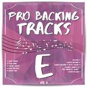 Pro Backing Tracks E, Vol.5 by Pop Music Workshop