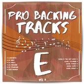 Pro Backing Tracks E, Vol.3 by Pop Music Workshop