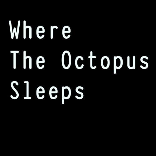 Where the Octopus Sleeps di Paolo Sereno