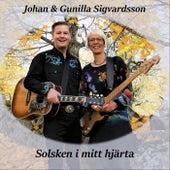 Solsken i mitt hjärta by Various Artists