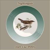 Nightingale de Jean-Luc Ponty