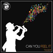 Can You Feel It by Tigger