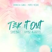 Tek It Out by Sheba Vybz Kartel