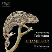Chameleon de New Collegium