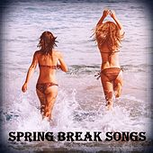 Spring Break Songs von Various Artists
