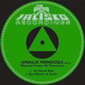 Un Mundo Raro by Amalia Mendoza