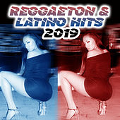 Reggaeton & Latino Hits 2019 de Various Artists