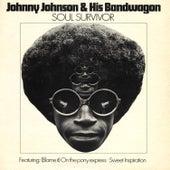 Soul Survivor von Johnny Johnson
