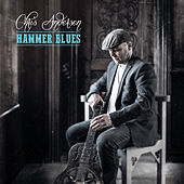 Hammer Blues by Chris Andersen