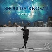 Shoulda Known (Godwin Remix) de Kenna