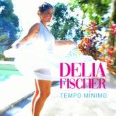 Tempo Mínimo de Delia Fischer