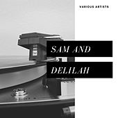 Sam and Delilah (Easy Listening) von Various Artists