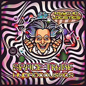 Psycho Logistics by Space Tribe