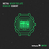 Never Too Late de Metha