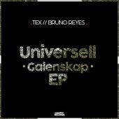 Universell Galenskap - Single by Tex