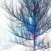 Ambient by Chab