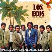Goza Tu Cumbia: Peruvian Psychedelic Cumbia de Los Ecos