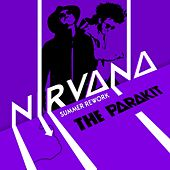 Nirvana (Summer Rework) de The Parakit