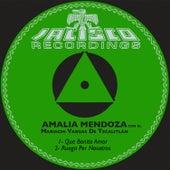 Que Bonito Amor de Amalia Mendoza