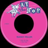 Little Bo Peep de Buddy Miller