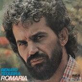 Romaria de Renato Teixeira