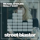 Really Want by Michael Sterling
