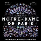Eternal Notre-Dame de Paris by Chœurs de la Maîtrise Notre-Dame de Paris, Nicole Corti, David Selig
