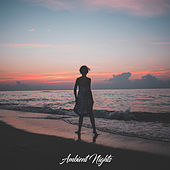 Ambient Nights de Various Artists