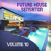 Future House Sensation, Vol.10 (BEST SELECTION OF CLUBBING HOUSE TRACKS) by Various Artists