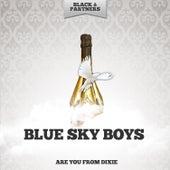Are You From Dixie de Blue Sky Boys