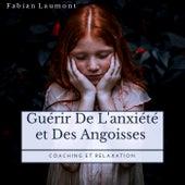 Guérir de l'anxiété et des angoisses (Coaching Et Relaxation) von Fabian Laumont